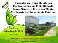 Encontro com o bruxo das plantas medicinais em Florianópolis