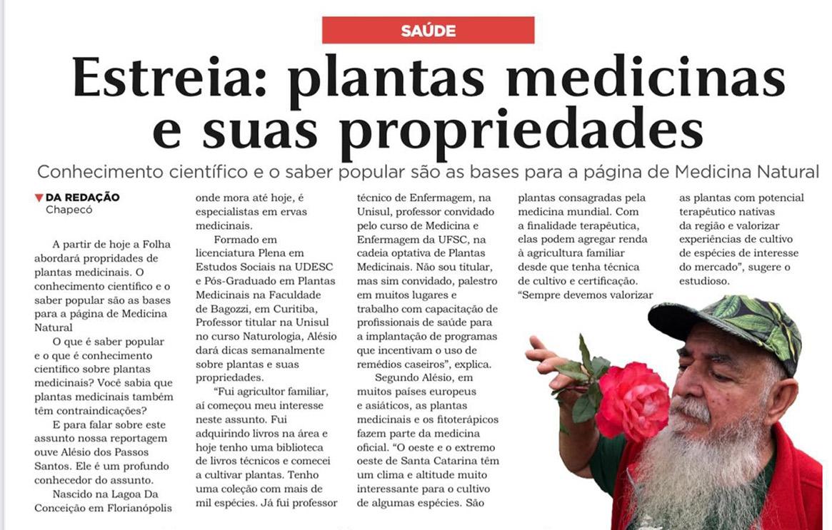 Plantas medicinais e suas propriedades- Folha Desbravador
