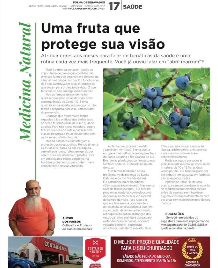 You are currently viewing Uma fruta que protege sua visao