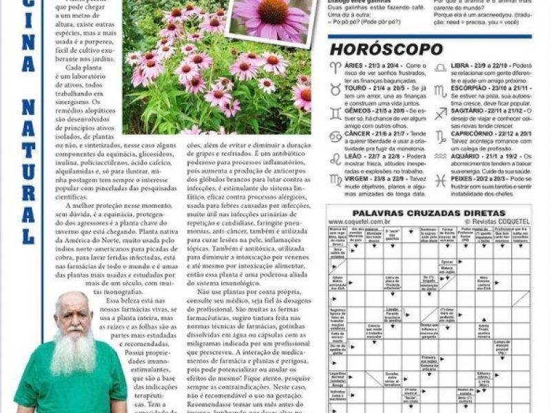 Planta da semana equinacia jornal Novoeste
