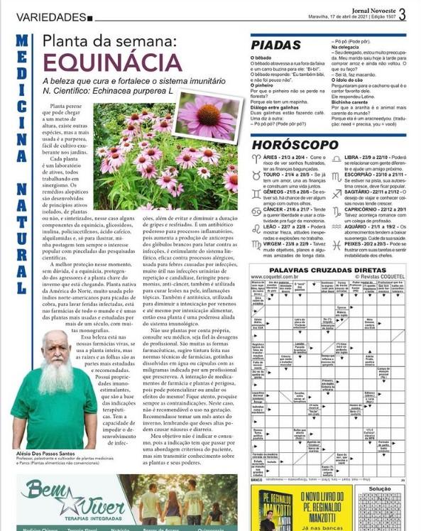 You are currently viewing Planta da semana equinacia jornal Novoeste