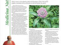 Uma planta que ameniza os efeitos da meno pausa